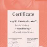 Permanent Make-Up, Augenbrauen, 3D Nano Augenbrauen, 3D Microblading, Microblading